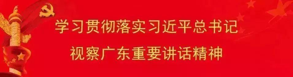 2020年广州市增城/从化/番禺/黄埔四区发布积分入学结果 !